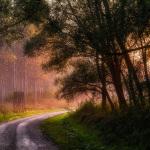 Úton-útfélen