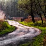 Az-erdő-szelleme